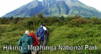 hiking-mgahinga-uganda