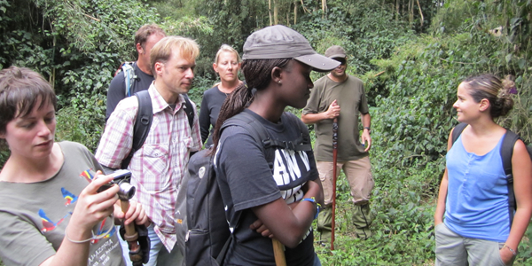 Sightseeing in Uganda, Safari Attractions
